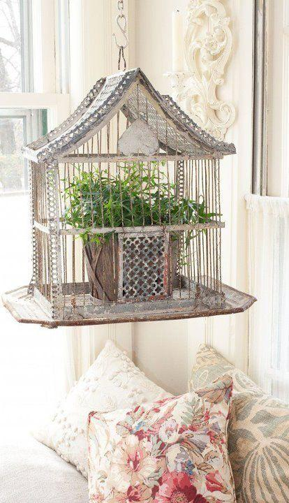 Decorative cage in a shabby chic living room
