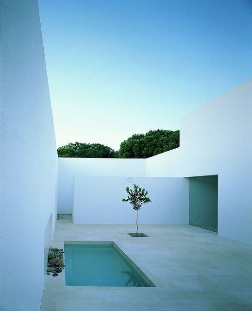 Minimalist garden and landscape design ideas founterior for Minimalist house cleaning