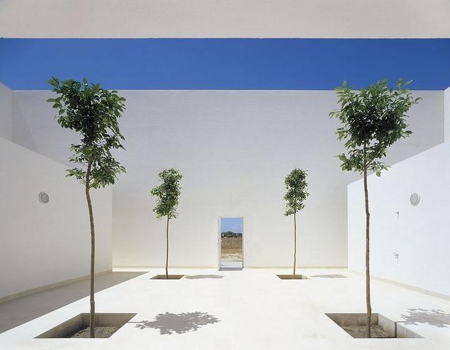 Minimalist Garden and landscape Design Ideas