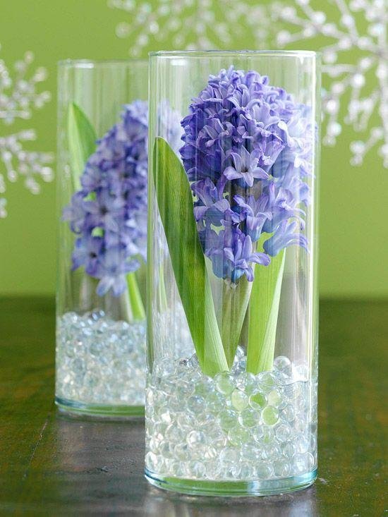Beautiful glass vases - with fresh hyacinths in them