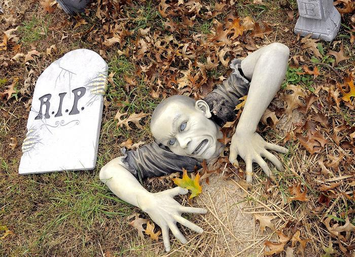 halloween yard ideas decorations inflatables and. Black Bedroom Furniture Sets. Home Design Ideas