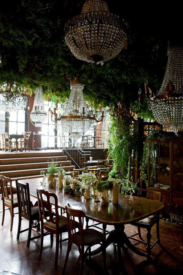 Interior flower decoration - with plants and eclectic chandeliers