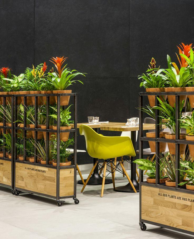 Interior plants - forming separate niches for tables