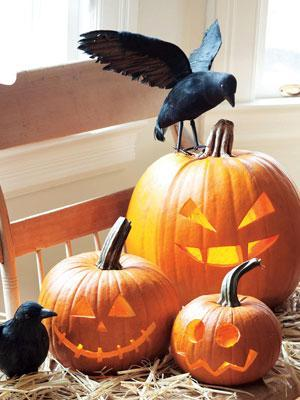 Scary Halloween pumpkins - with ravens around them