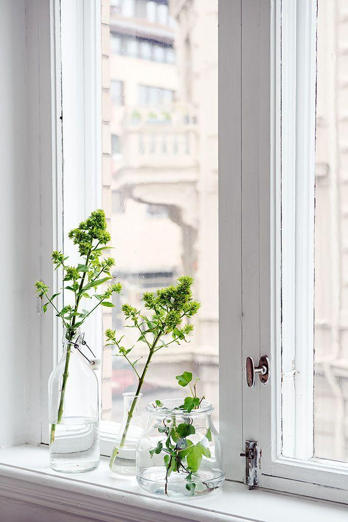 Window vases - inside a French apartment
