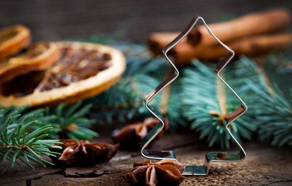 Christmas ornament - tree - with natural decor