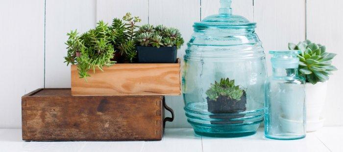 Decorative jars - for flowers
