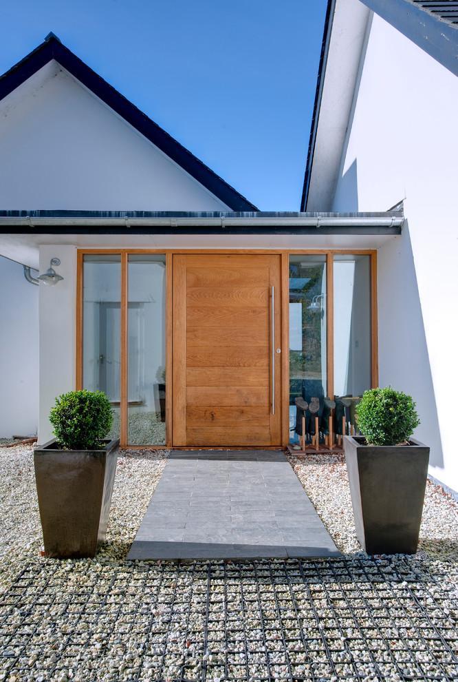 Entrance door - with modern design