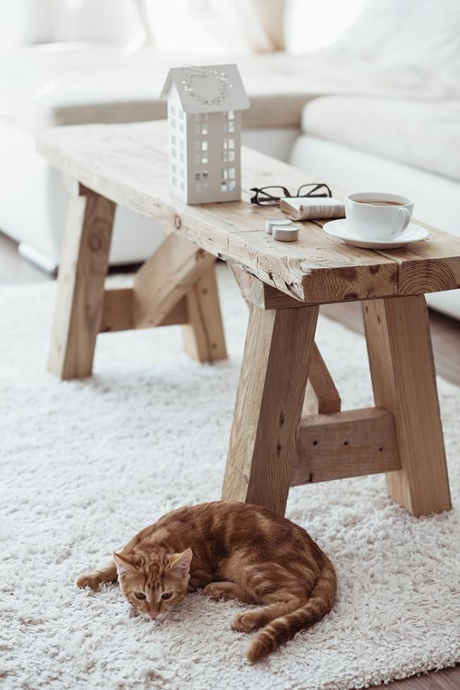Eco design living room - with rustic table