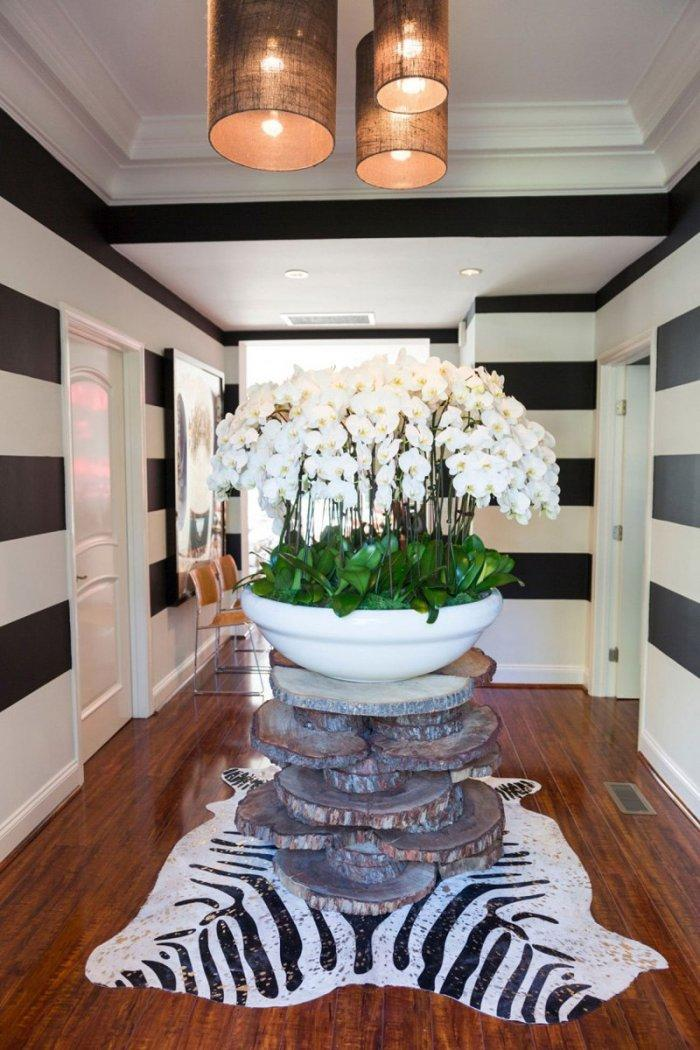Mid-century modern entryway - with zebra rug