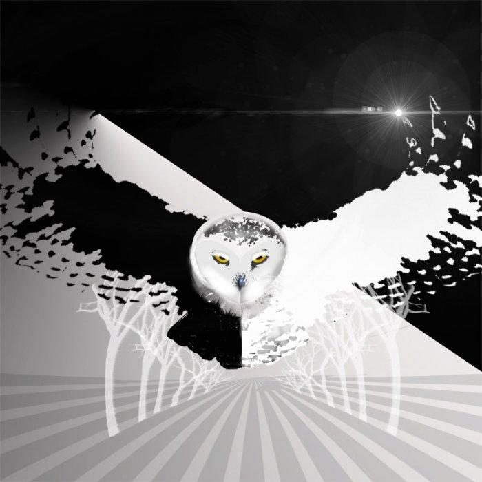Abstract contemporary wall art - owl print