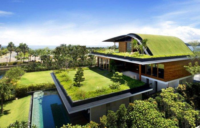 Sustainable house with green grass roof