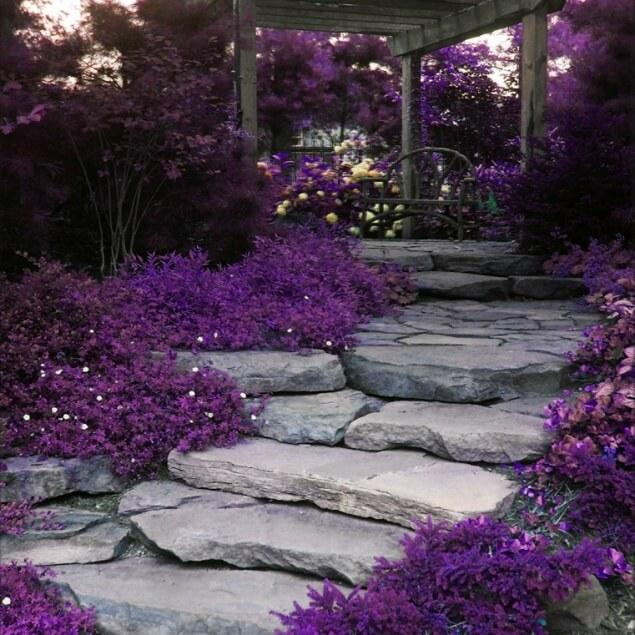 10 Amazing Stone Walkways That Will Steal The Show