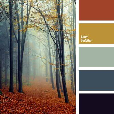Top tips to give your interiors an update this autumn: Colour