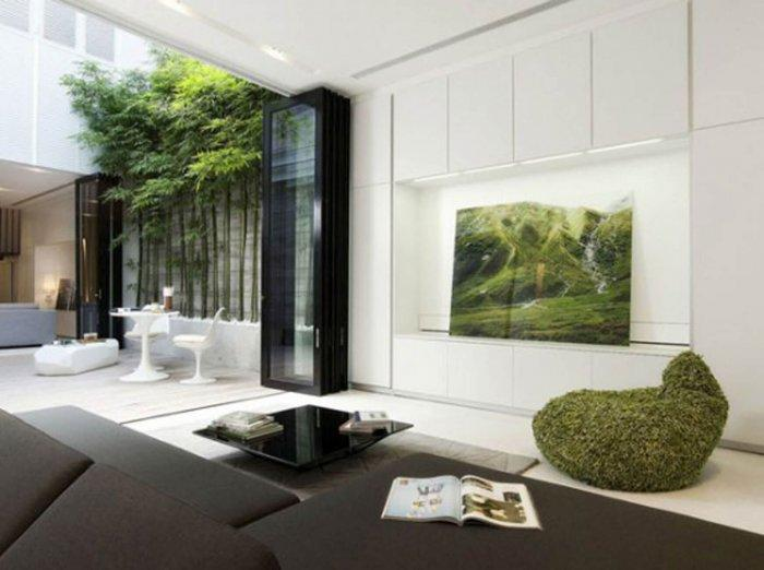 plants sparingly , plants in modern interior