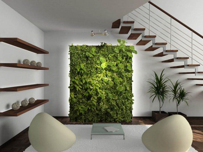 Organic Modern on a Budget: The 5 Tell-tale Features: plants sparingly , plants in modern interior