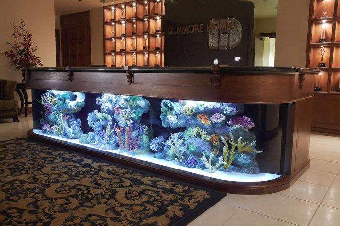 Ways To Add Oomph to Your Office: aquarium office