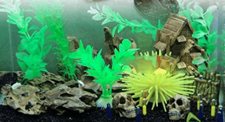 The Absolute Best Aquarium Decorations for Every Holiday | Founterior