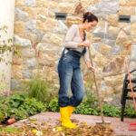 Clean up Your Yard With These 5 Easy Steps