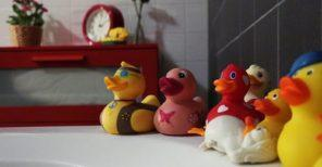 Assorted Rubber Duckies on White Surface