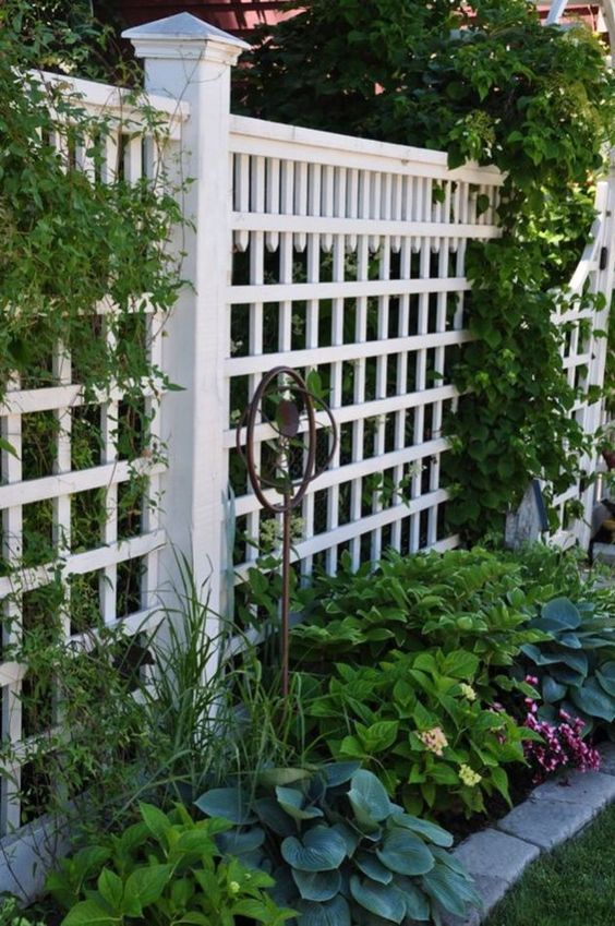 Painting it in White – Very Cheap Garden Fence Ideas