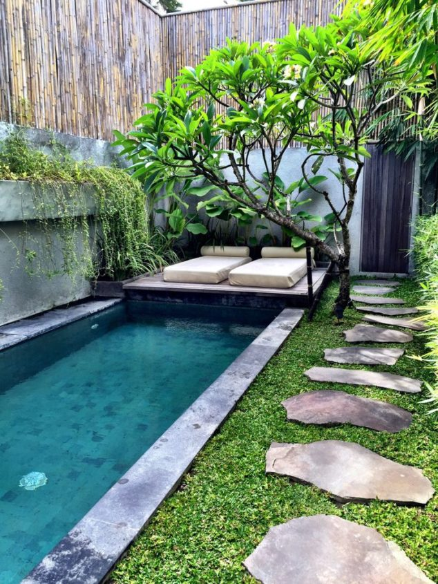 Exotic and Unique - Very Small Garden Ideas on a Budget
