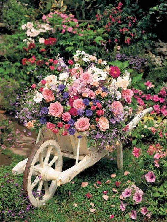 An Alternative to a Flowerpot – A Fabulous Wheelbarrow