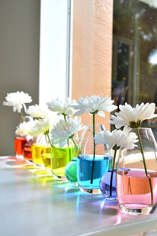 A Rainbow of Flowers - A Bit of Science