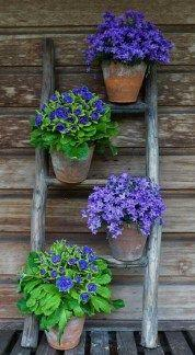 A Ladder of Flowers - Garden Decoration Ideas for Summer
