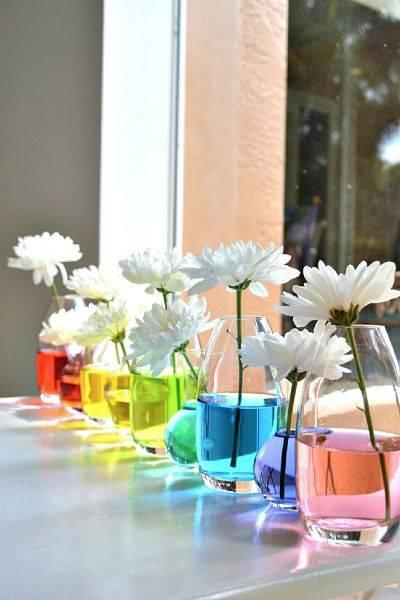 A Set of Rainbow Flowers - Science and Creation