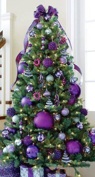 An Array of Purple - Charming and Elegant