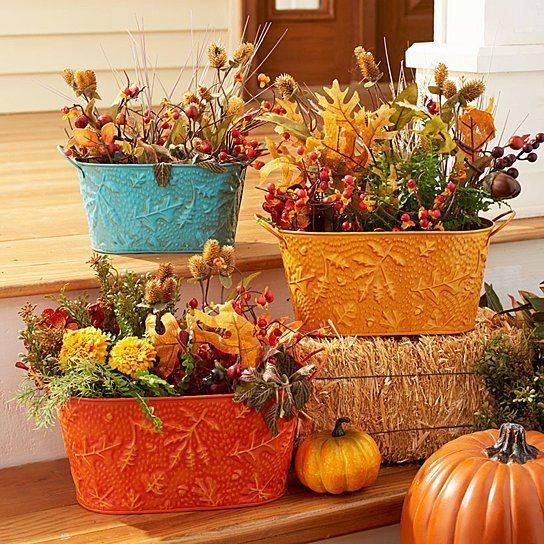 Fabulous Planters - Stylish and Dazzling