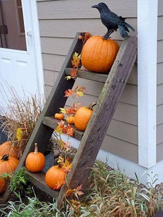 A Rustic Ladder – Easy and Effortless