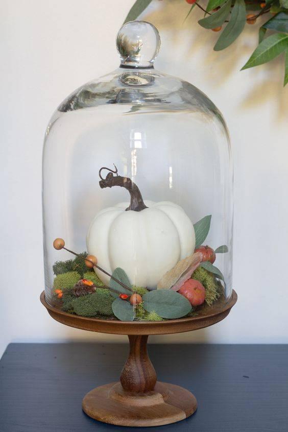 A Small Terrarium - For a Small Pumpkin