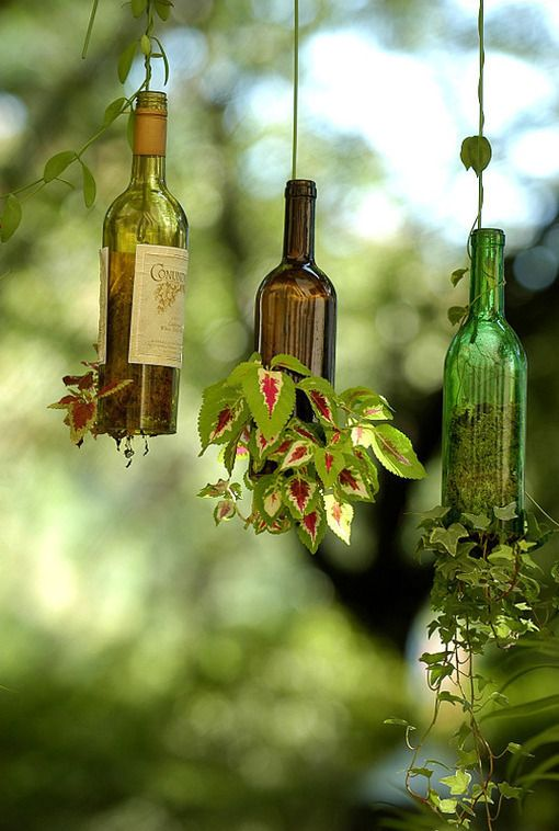 Hanging Wine Bottles Planters - Romantic and Whimsical