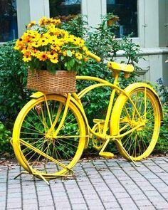 A Burst of Yellow - A Bicycle Planter