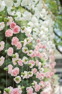 Pink and White Carnations - Floral Backdrop
