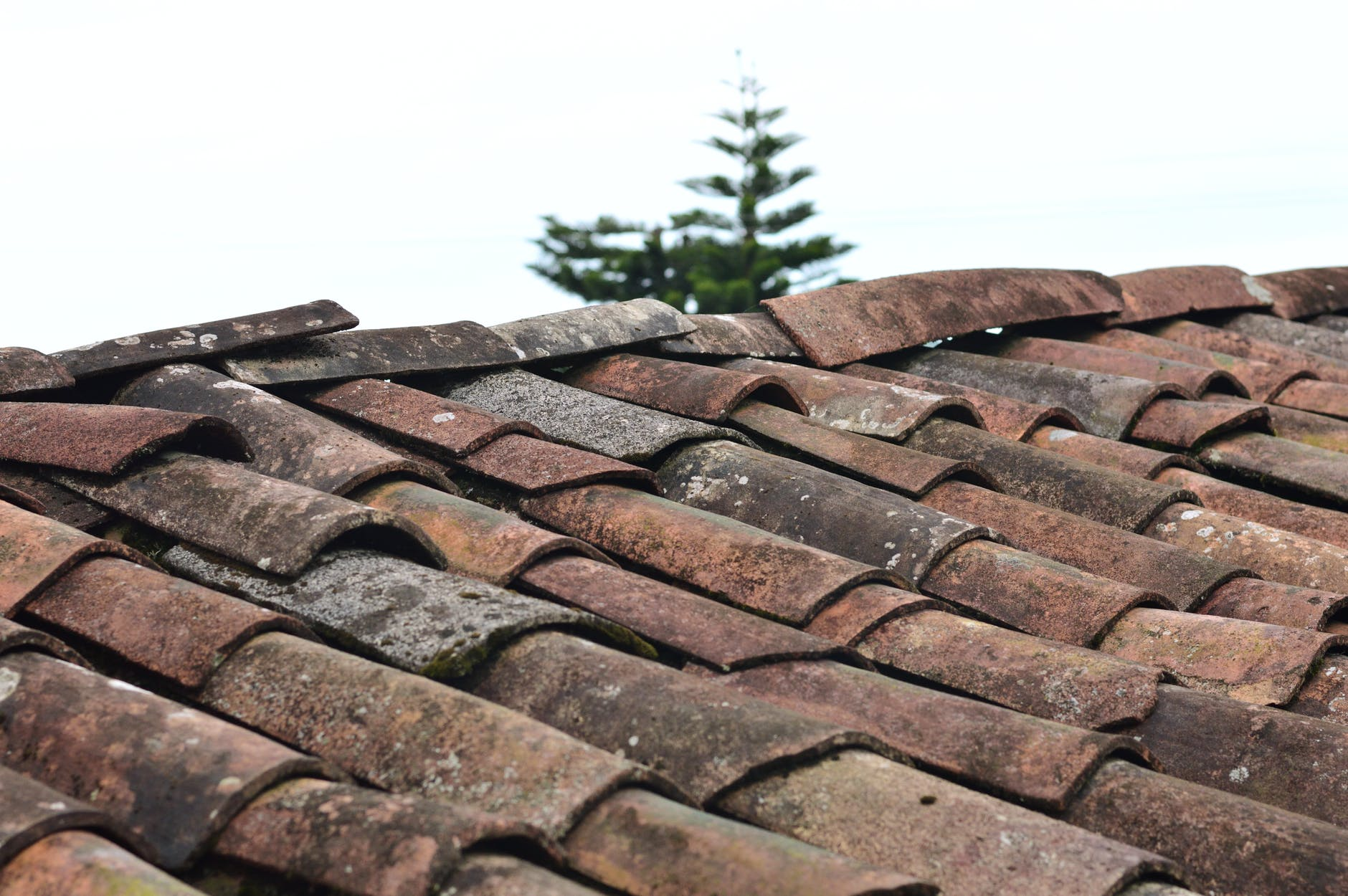 D:\Juan\Desktop\CRC\83056-0331QK - Why You Should Hire Professional Roofers in Raleigh\pexels-photo-1453799.jpeg