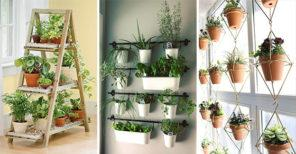 25 BEST INDOOR HERB GARDENS - Herb Planters for Kitchen