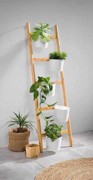 A Herb-Filled Ladder - Overgrown with Greenery