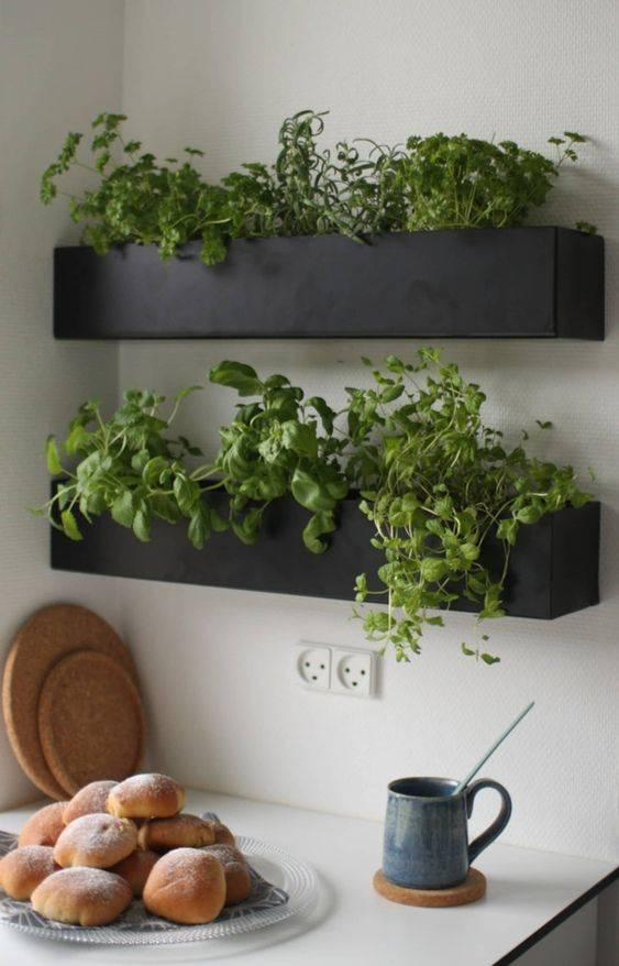 Herb Planters for Kitchen Ideas - Perfect for Cooking
