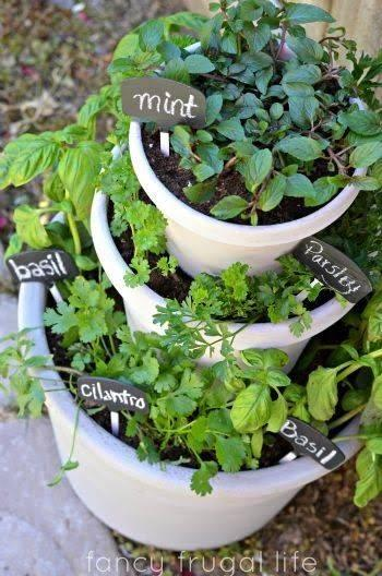 Multiple Tiers - Raised Best Indoor Herb Garden