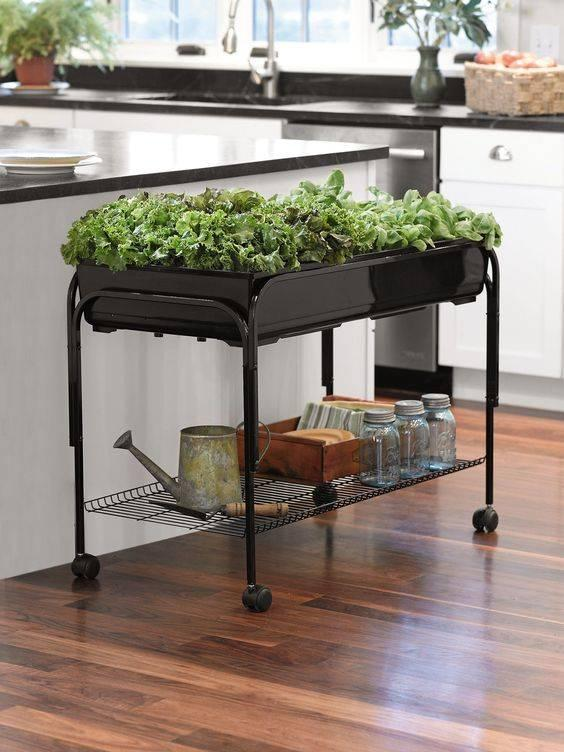 A Moveable Table - Practical Herb Planters for Kitchen