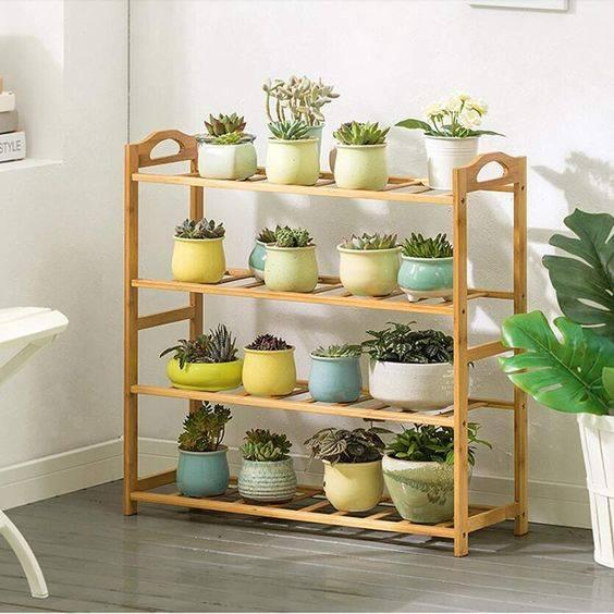 A Shelf for Plants - A Corner of Greenery