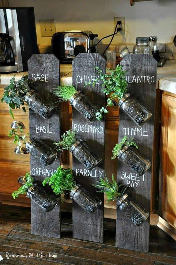 An Array of Herbs - Herb Planters for Kitchen