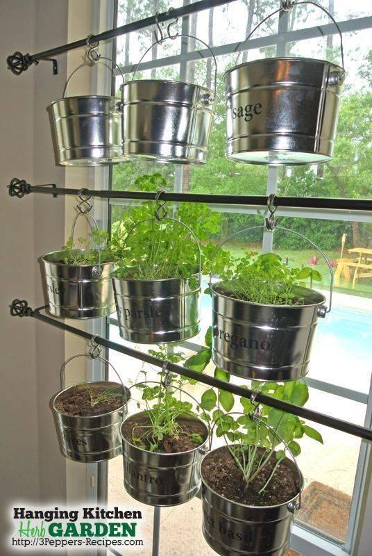A Wholesome Hanging Garden - A Simple Look
