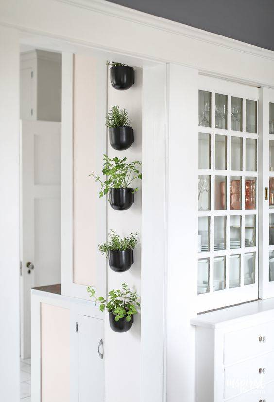 In One Line - Herb Planters for Kitchen