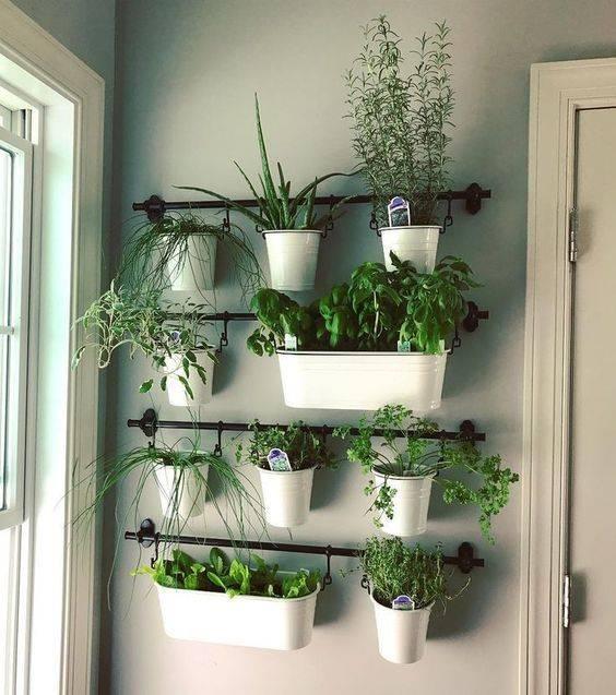 Cover One of Your Walls - Best Indoor Herb Garden Ideas