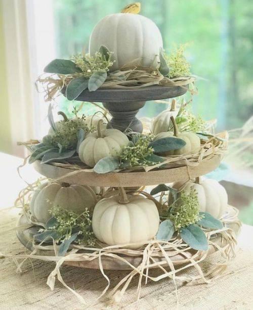Miniature Pumpkins - Perfect for Autumn