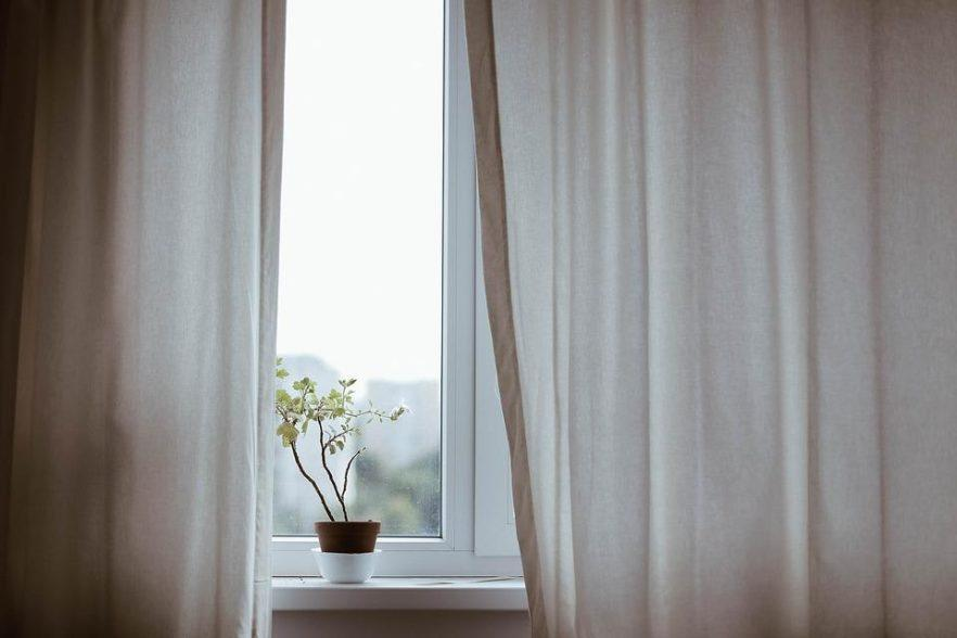 Curtains, Decoration, Indoors, Plant, Pot Plant, Window